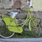 Jazda na rowerze- same plusy