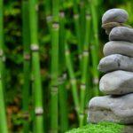 Śliczny ,a także czysty zieleniec to zasługa wielu godzin spędzonych  w jego zaciszu podczas pielegnacji.